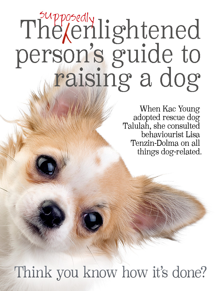 The Supposedly Enlightened Person's Guide to Raising a Dog by Kac Young