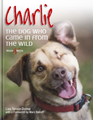 HH4784 Charlie – The dog who came in from the wild