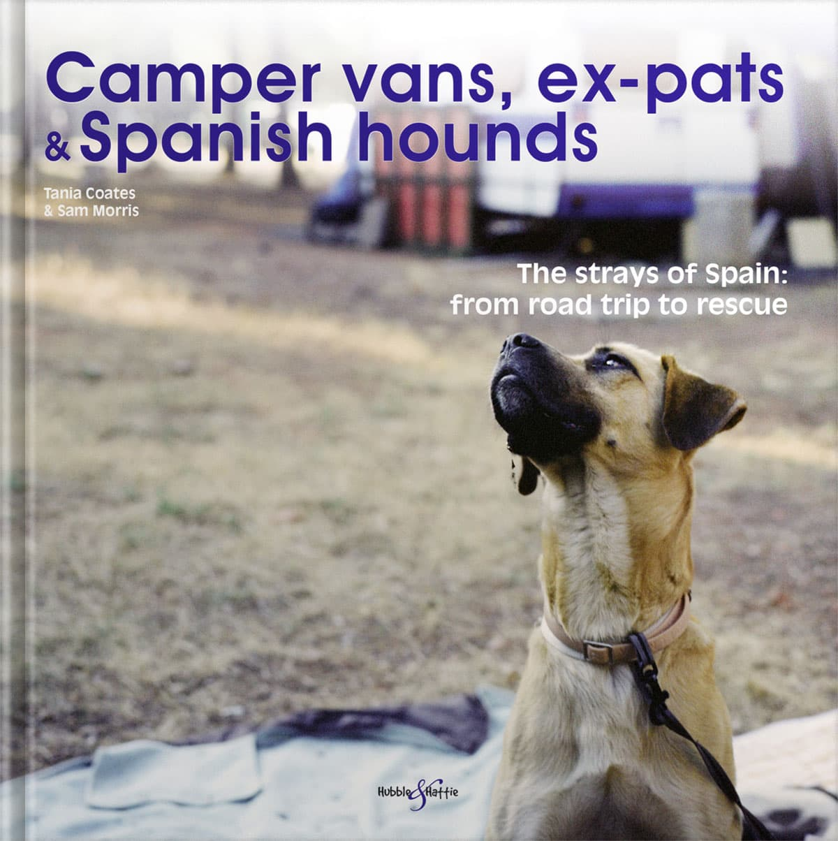 Camper vans, ex-pates, and Spanish hounds
