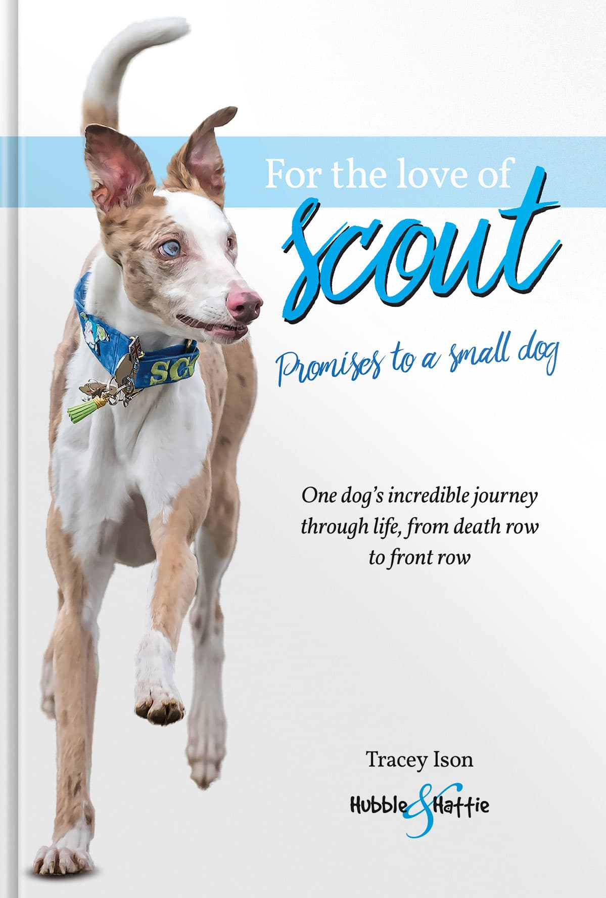 For the love of Scout –Promises to a small dog