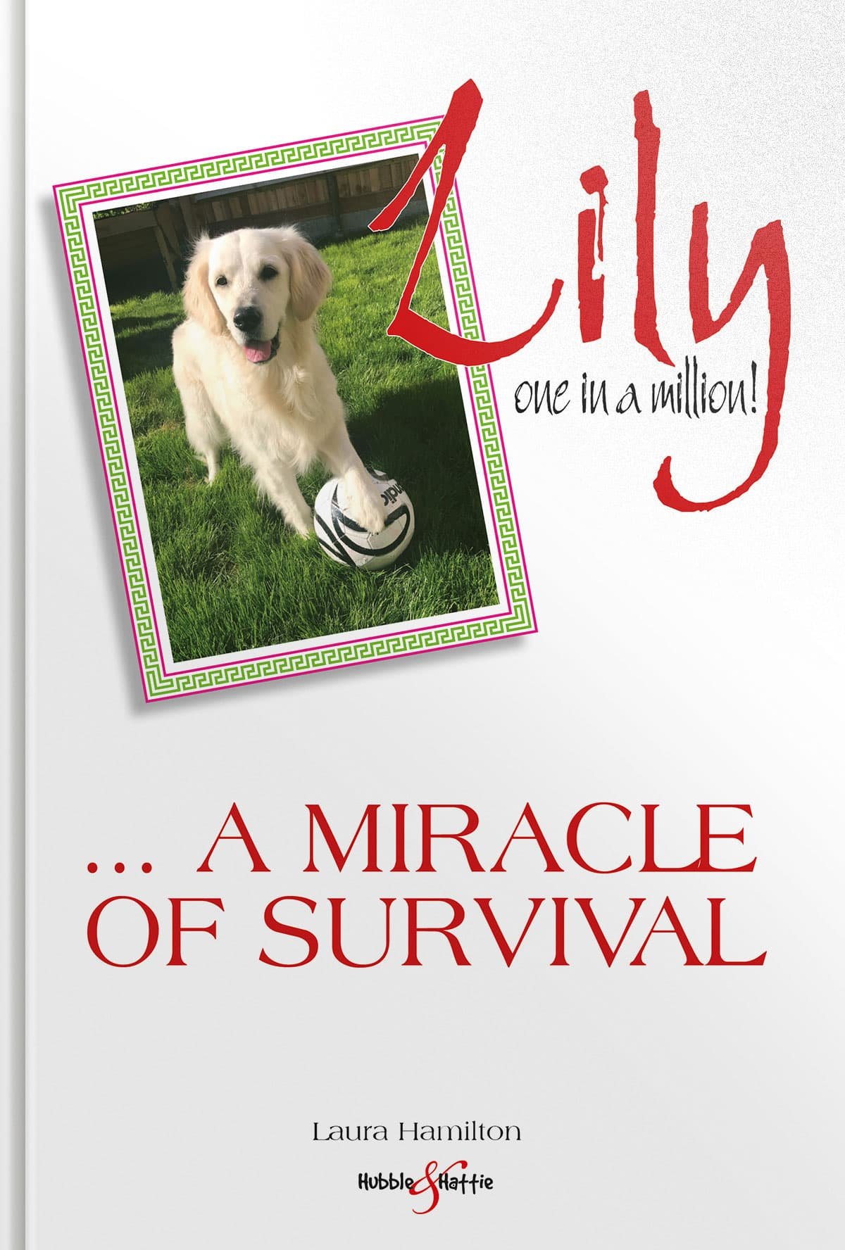 Lily: one in a million... a miracle of survival