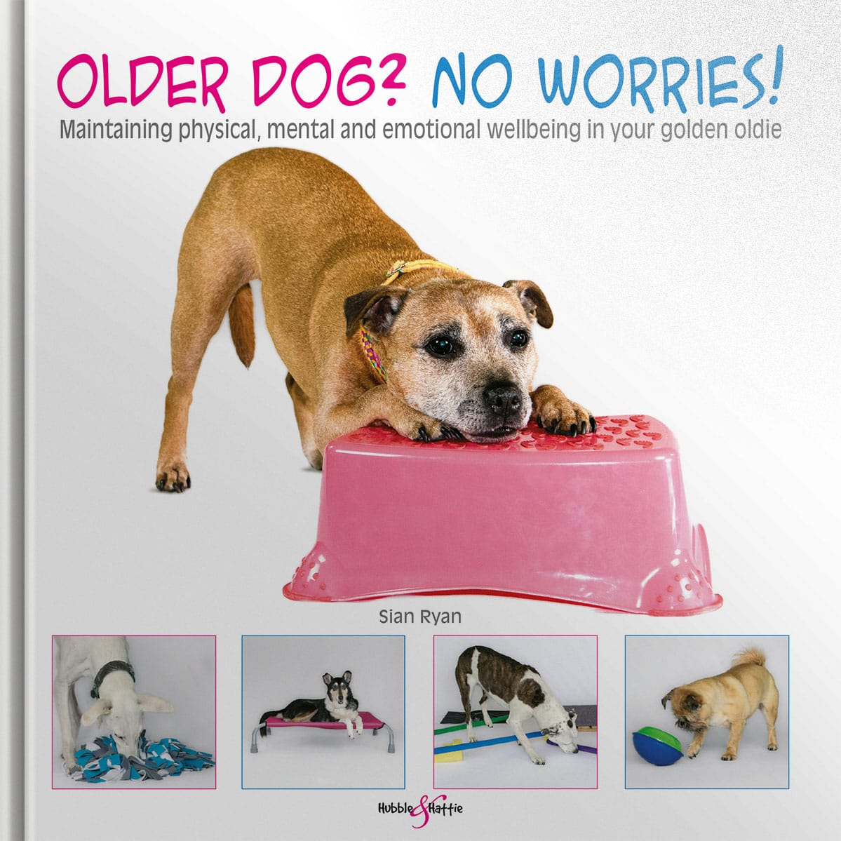 Older dog? No worries! – Maintaining physical, mental and emotional wellbeing in your golden oldie