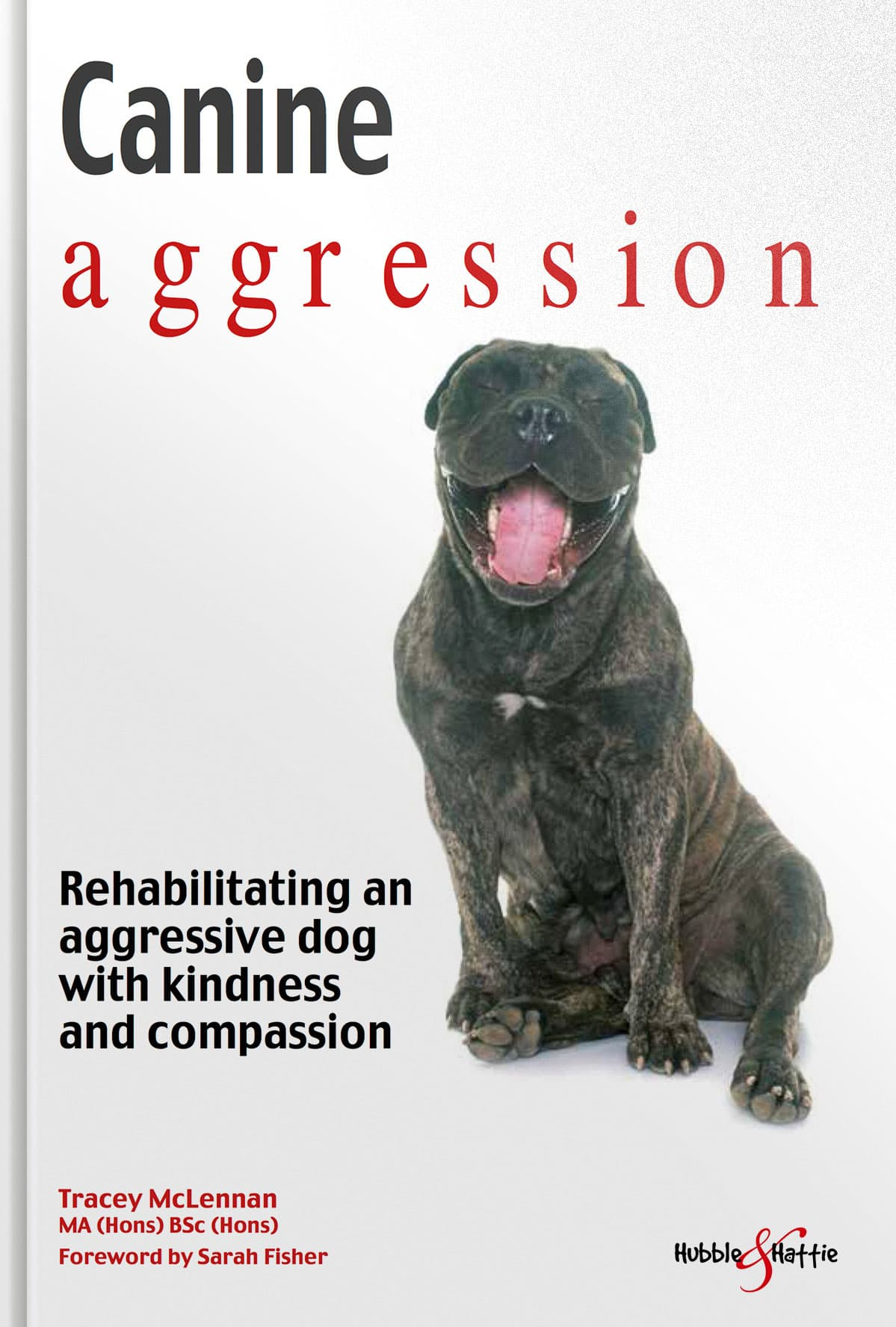 Canine aggression Rehabilitating an aggressive dog with kindness and compassion