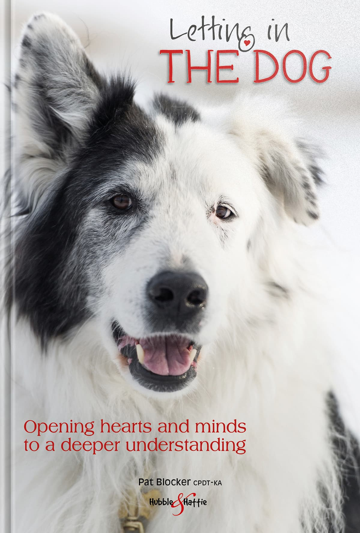 Letting in the dog –Opening hearts and minds to a deeper understanding