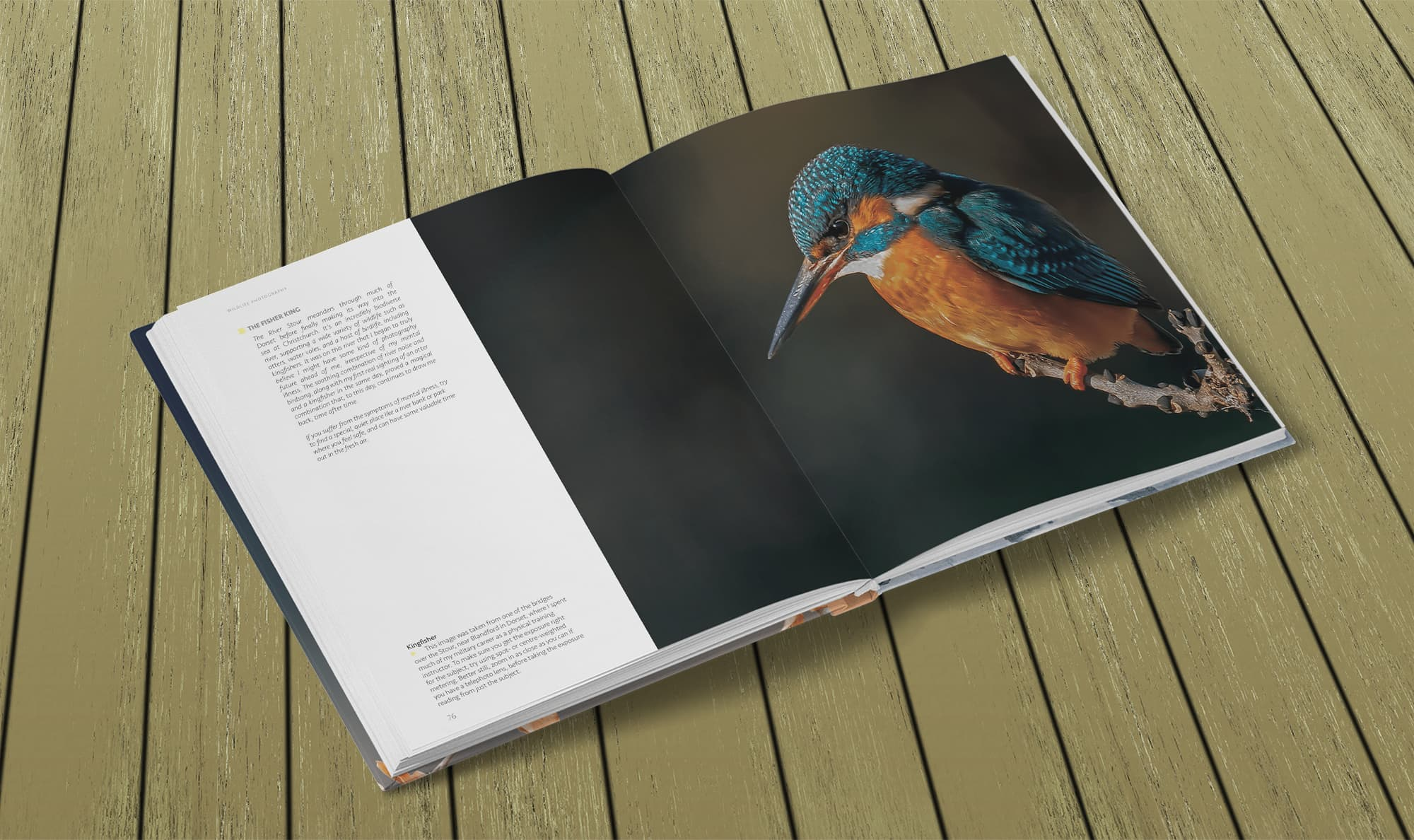 Wildlife Photography by Paul Williams – Kingfisher