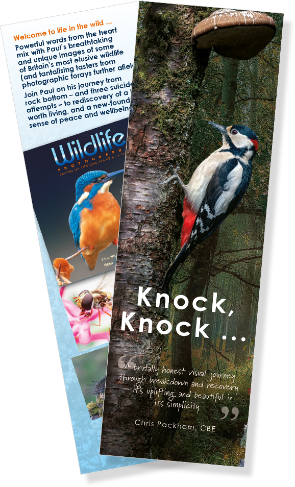 FREE Wildlife Photography bookmark!
