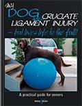 HH4383 My dog has cruciate ligament injury – But lives life to the full!