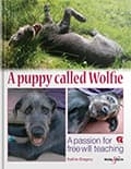 HH5070 A puppy called Wolfie – A passion for free will teaching