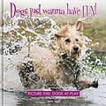 eHH5407 Dogs just wanna have FUN! – Picture this: Dogs at Play